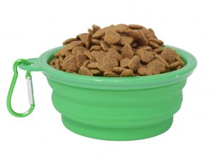 Green Dog Travel Bowl