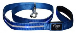 Blue LED Lighted Dog Leash