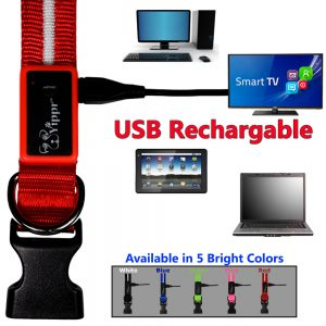 Rechargeable LED Collar Red