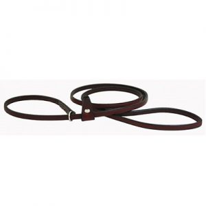 Leather Slip Leash