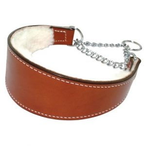 Lined Dog Collar