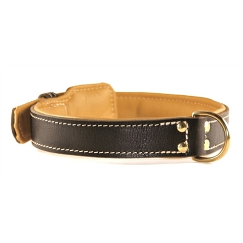 Padded Luxury Leather Collar