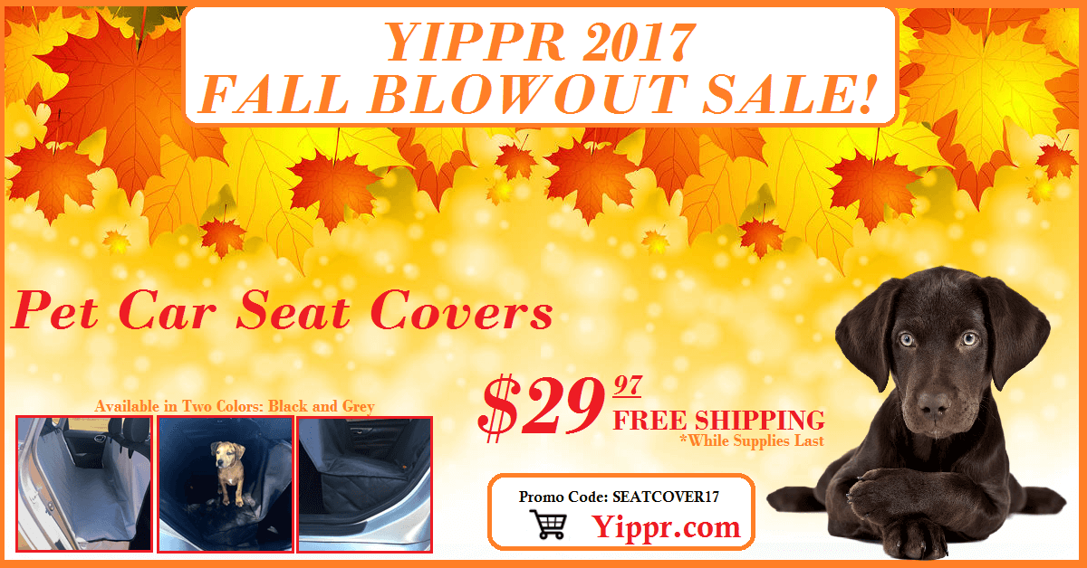 Pet Seat Cover Sale