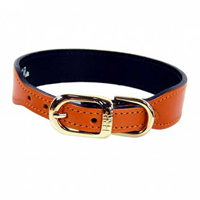 Dog Collar Made with Leather