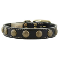 Leather Collar with Conchos