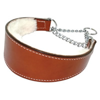 Martingale Padded Leather Dog Collar