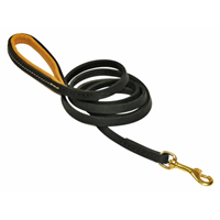Padded Leather Dog Leash