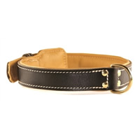 Padded Leather Luxury Dog Collar