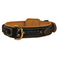 Western Padded Dog Collar